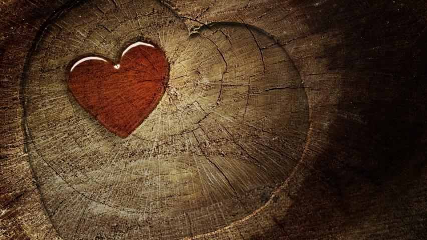 ws_Wood_Heart_852x480