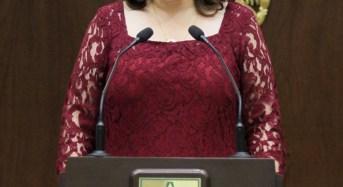 No importa quien presenta una iniciativa, hay que ver la ciudadanía: Celia Rivas