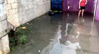 Evidencia de malos servicios municipales: vecinos de la Serapio Rendón alzan la voz
