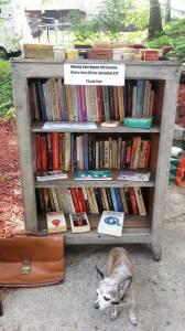 Feminist Literature & Box Collection