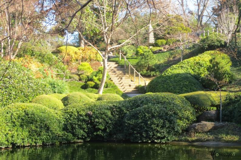 #landscaping #japanese gardening