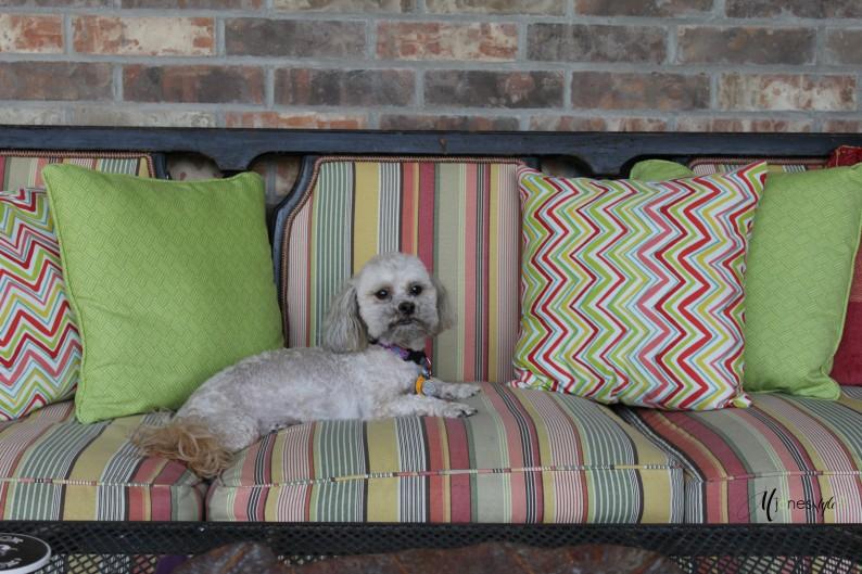 #outdoor furniture#vintage sofa