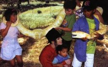 jackson-at-neverland-with-kids-snake1