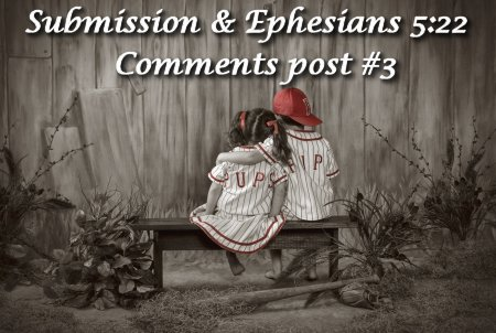 Ephesians 5:22 on Women in Ministry blog by Cheryl Schatz