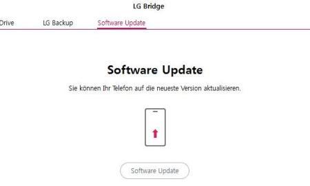 LG Bridge