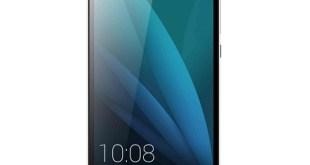 Huawei Honor 4X & Honor Holly