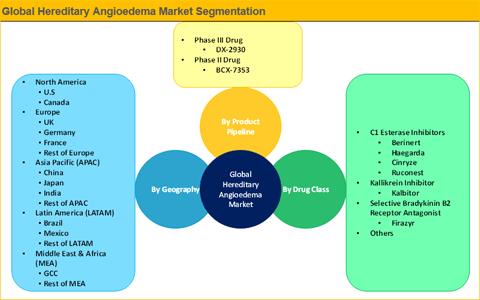 Hereditary Angioedema Market