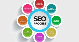 What Is The Importance Of Using Infographic In SEO Online Business?