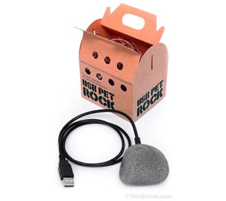 USB Pet Rock Just as Useless as Non-USB Version