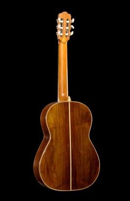 Rosewood guitar back