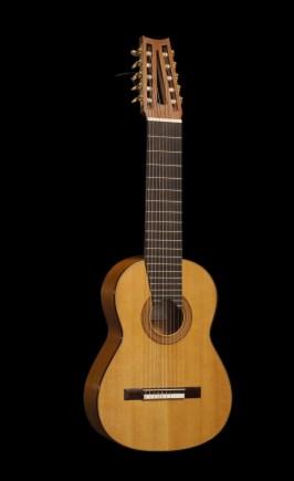 Ten strings guitar front