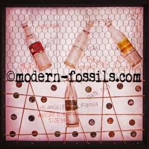 ©Modern Fossils