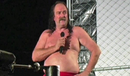 "WWE, pro wrestling, Jake ""The Snake"" Roberts, Hulk Hogan, sex tape"