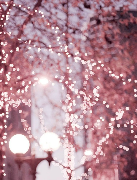 modflowers: sparkling lights by Georgianna Lane