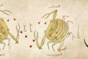 تعرف على عبد الرحمن الصوفي الذي يحتفل جوجل بذكرى ميلاده وأشهر مؤلفاته Abd al-Rahman Al-Sufi
