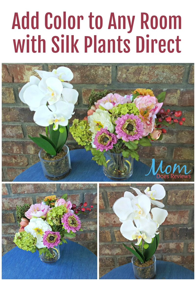 Clever Silk Plants Direct Silk Plants Direct Customer Service Silk Plants Direct Wholesale Add Color To Any Room houzz 01 Silk Plants Direct