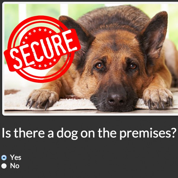 DOG-SECURITY-600x600
