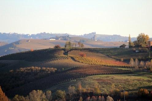 Piemonte/ Langhe d'autunno