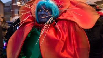 Carnival, Muggia, Friuli Venezia Giulia, Italy, Europe