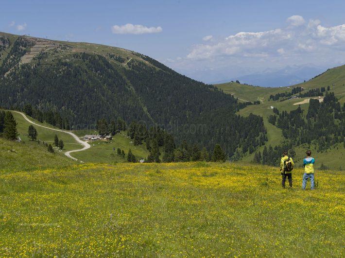 passeggiate in Trentino