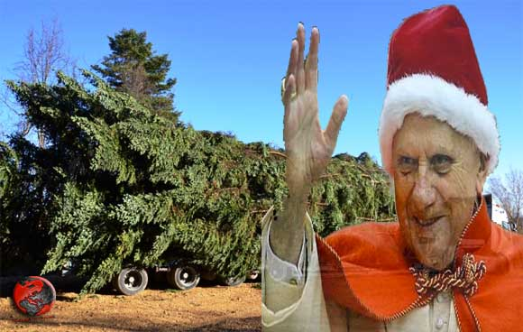 Natale-2012-Papa-Ratzinger-Pescopennataro-Abete-albero-di-Natale-Vaticano-piazza-San-Pietro