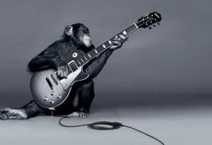 rocksmith-monkey