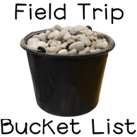 Field Trip Bucket List