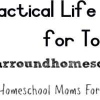 Year Round Homeschooling: Totschool ~ Practical Life Activities for Tots