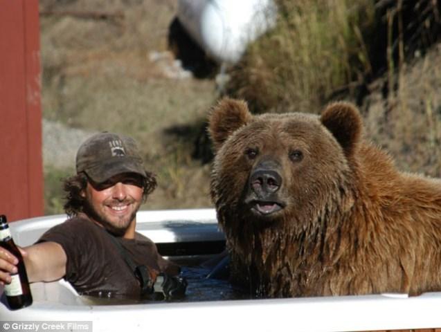 1245814797-bear griz 4