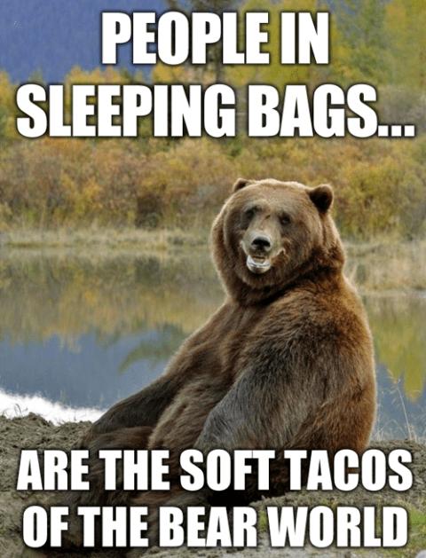 bearstacos