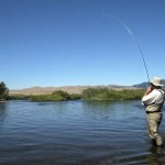 Whitefish Biting on Flathead River: MORS Weekly Wrap Up