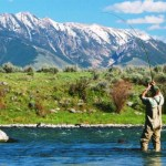 Lots of Dry Fly Fishing on The Madison in the Butte and Bozeman Area Outdoor Report