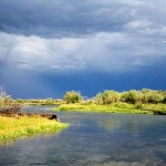 The Rivers Are on the Rise in the Butte and Bozeman Outdoor Report