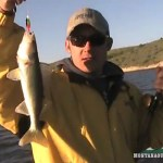 Montana Walleye Fishing on Canyon Ferry: Video of the Week