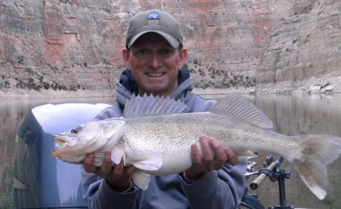 Slater walleye