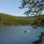 Rainbows Hitting on McGregor Lake: Montana Fishing Report