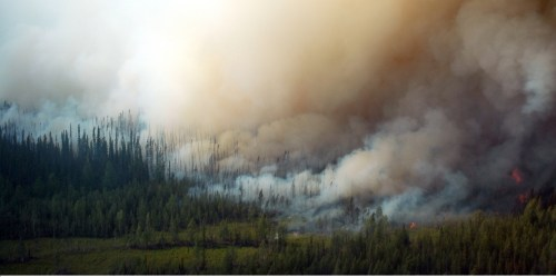 Wildfire in the Yukon Flats, Alaska, 2006