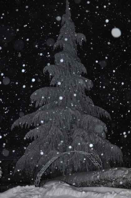 La notte in bianco