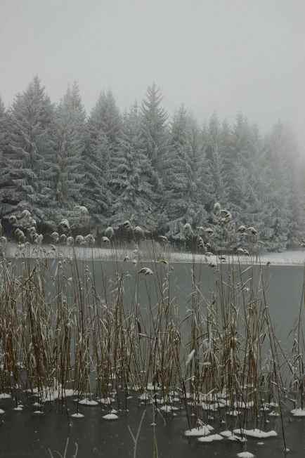 L'inverno del Lago degli Stocchi