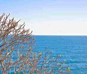 Il mare - di Claudio Leoni