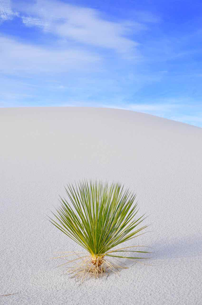 White Sands National Park - New Messico - di Claudio Leoni