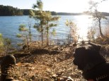 Camping at Mistletoe State Park - 11.22.2015 - 15.08.33