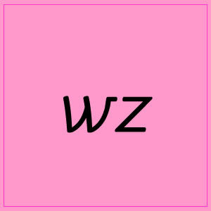 wz :: Pink Box 4 - Pictures and Words