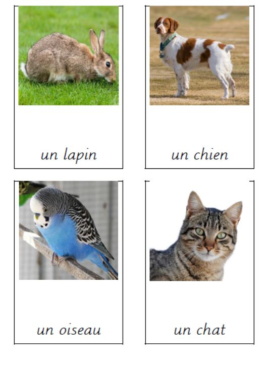 Three part cards - Animals in French