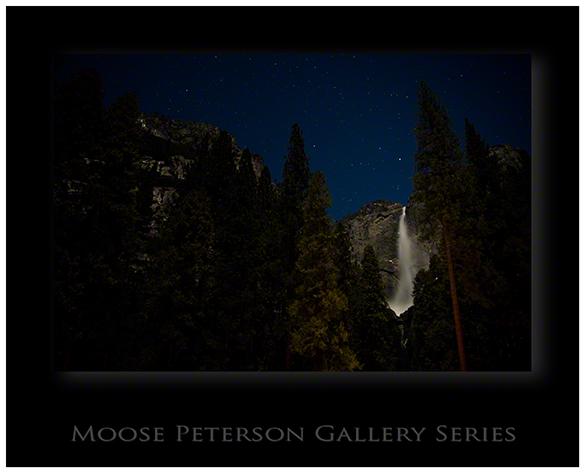Yosemite 5921