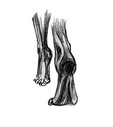 pieds-florentins