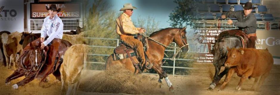 Quarter Horse News Magazine Quarter Horse News is an