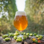 How to Participate in #IPAday