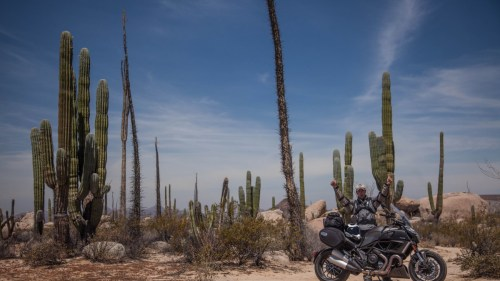 Baja Adventure  - Diavel Strada