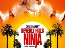 Beverly Hills Ninja movie review